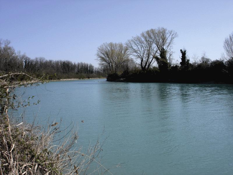Un'ansa del fiume