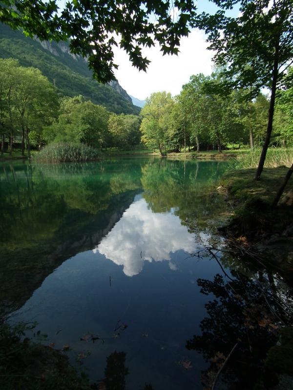 Il laghetto nella tenuta Protti