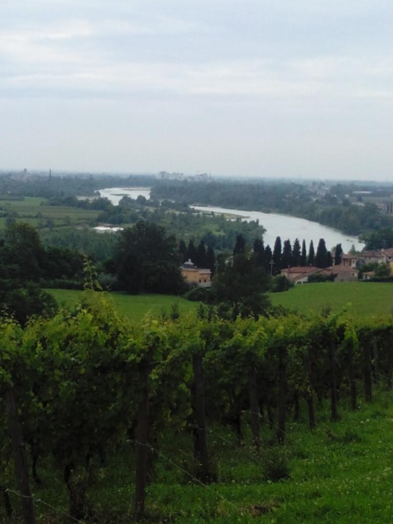 Il Piave visto dalla panoramica a Nervesa della Battaglia (TV). Foto di Lorenza Lunardi