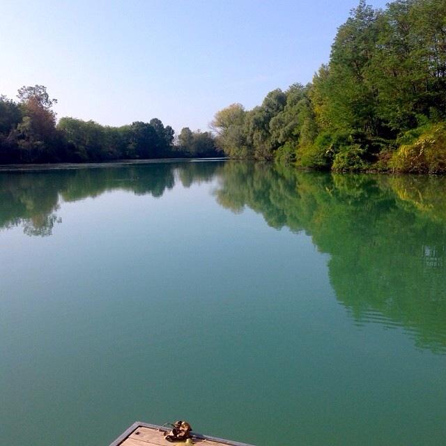 Il Piave dal Parco Fluviale di San Donà di Piave (VE). Foto di Maria Gavioli