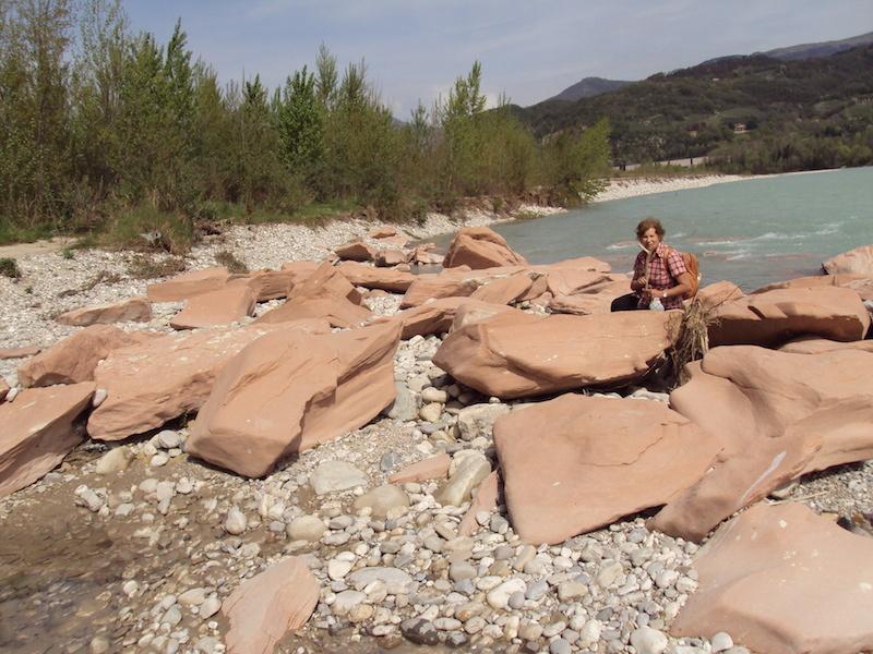 Il Piave a Pederobba, alla città degli aironi, dove un filone di scaglia rosa scende dalla valle di Schievenin fino al Piave. Foto di Pietro Bolani