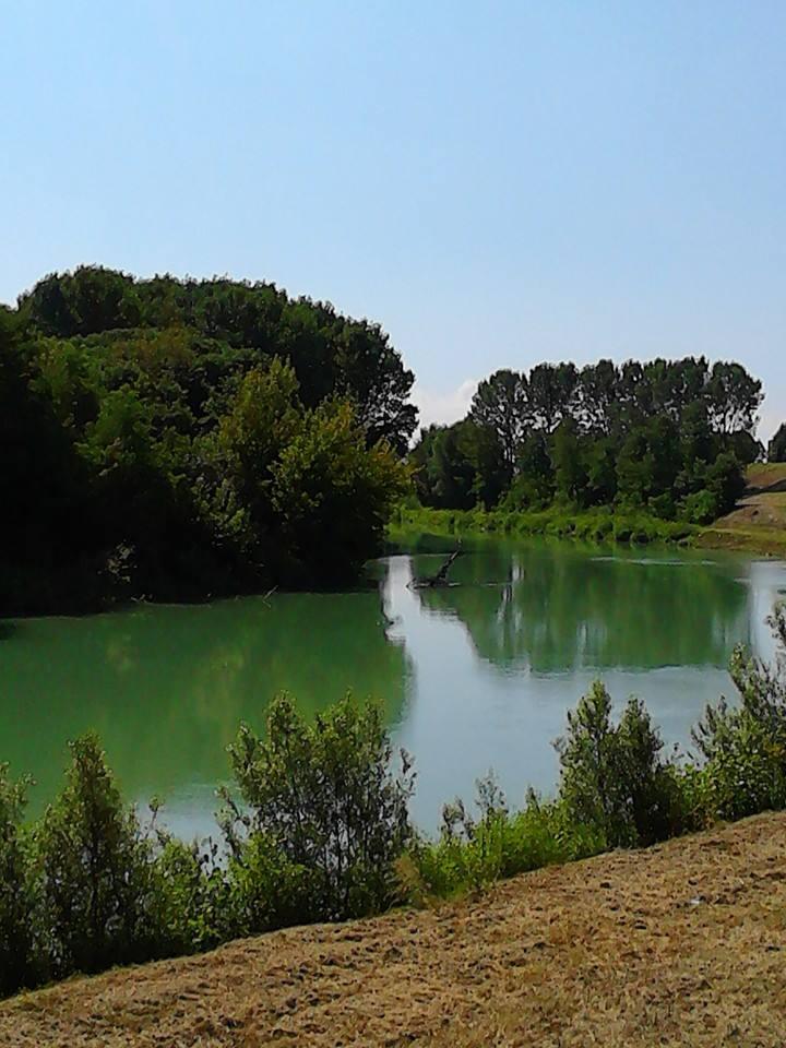 Il fiume Piave in località Zenson. Foto di Nicoletta Bortoluzzi