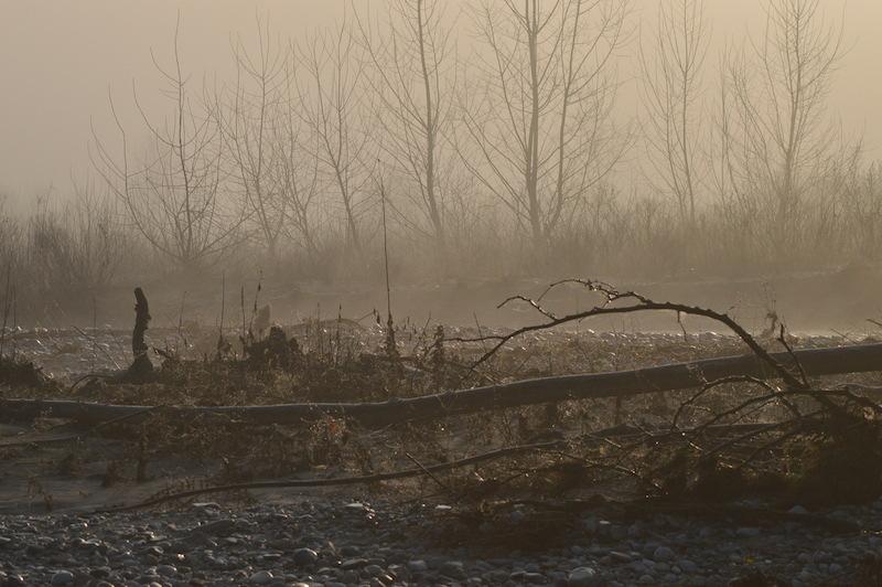 Il Piave all'Isola dei Morti di Moriago della Battaglia (TV). Foto di Santina Pompeo