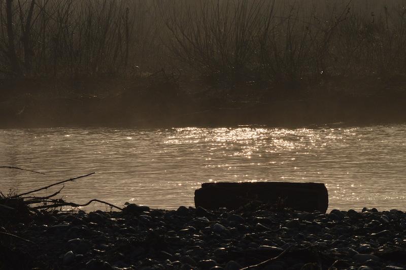 Le acque del Piave lungo l'Isola dei Morti a Moriago (TV). Foto di Santina Pompeo