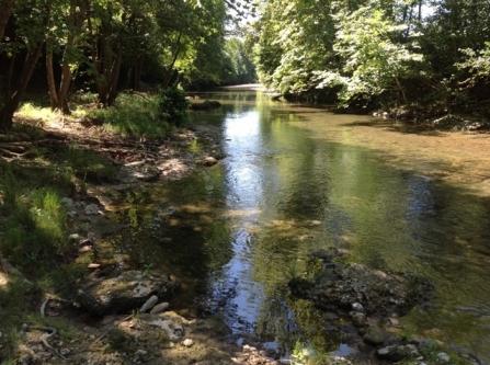 Il fiume Soligo, spettacolo naturale