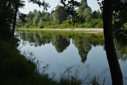 Riflessi d'acqua sul Piave tra Colfosco e S. Anna (TV). Foto di Santina Pompeo