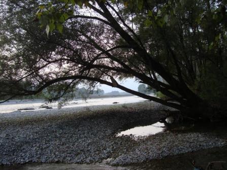 Tramonto lungo il Piave sul sentiero che va da S.Anna al Pontone. Foto di Luigi Menegazzo